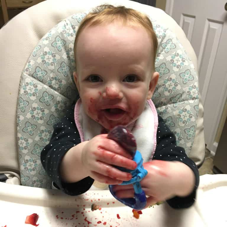 Introducing solids to baby with a Fresh Food Feeder