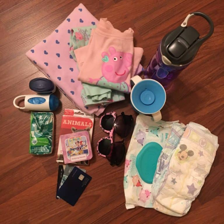 Baby Charm Stroller Organizer Product Review