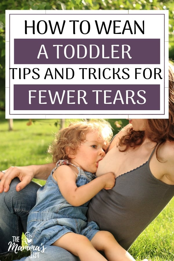 Weaning a toddler can be tricky. From attachment concerns to tantrums, it's definitely a process. Find out how we gradually weaned a breastfeeding toddler with minimal tears.